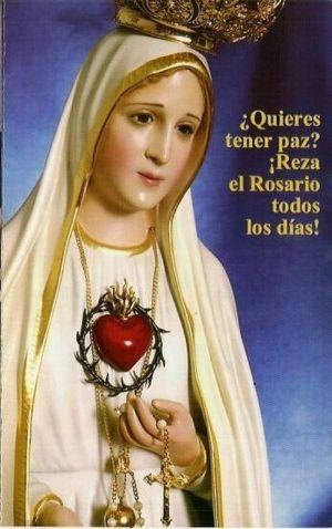 La Virgen de la Rosa Mística - La Casa de los Ángeles